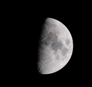 Chris Moon Image